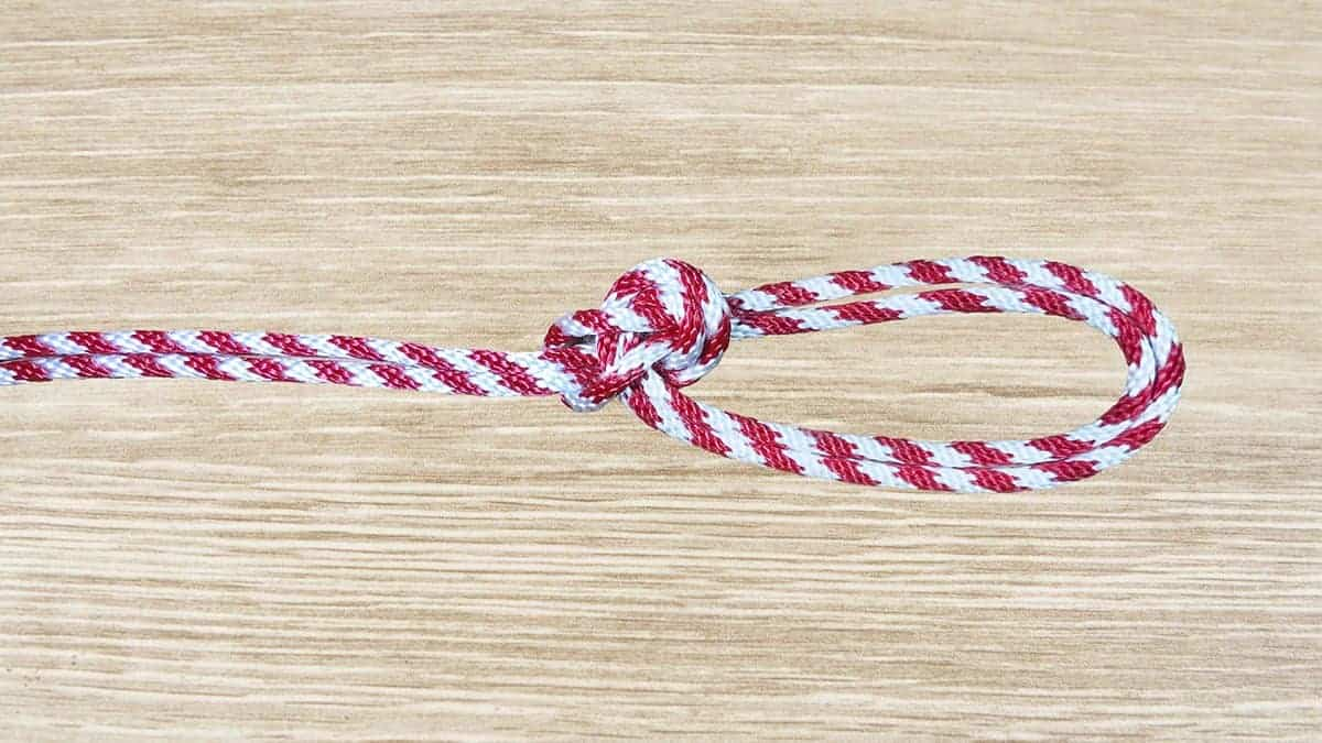 Bowline On A Bight Knot Step 8