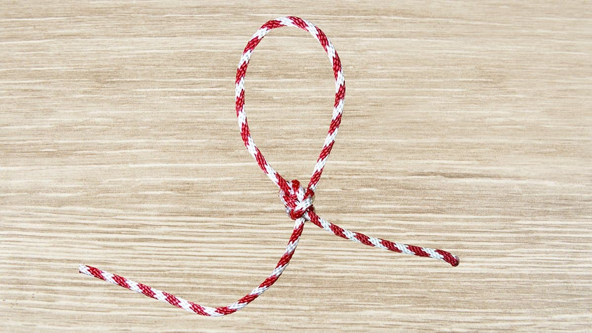 Running Bowline Knot Step 8