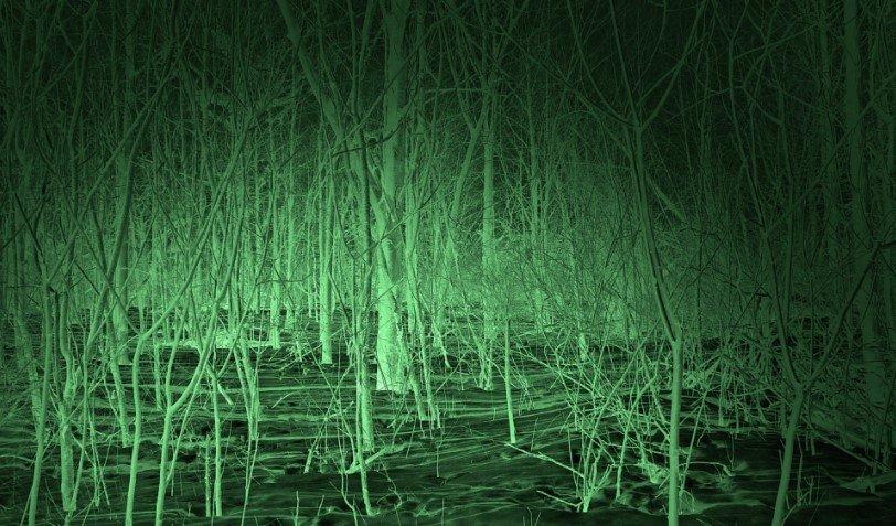 Night Vision Google View