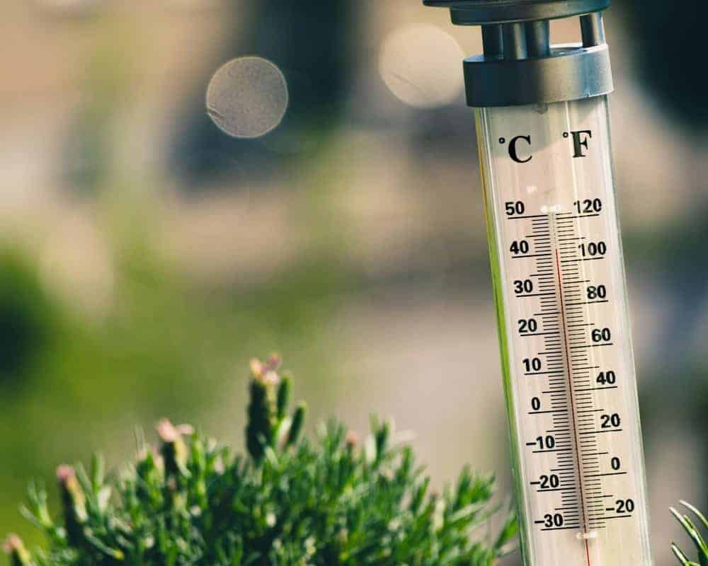 Analog Outdoor Thermometers