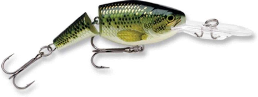 Best Crankbait for Shallow Water- Rapala Jointed Shad Rap
