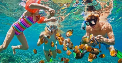 Snorkelers with fish underwater