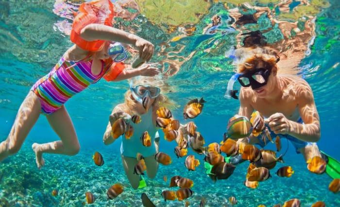 Snorkelers with fish underwater