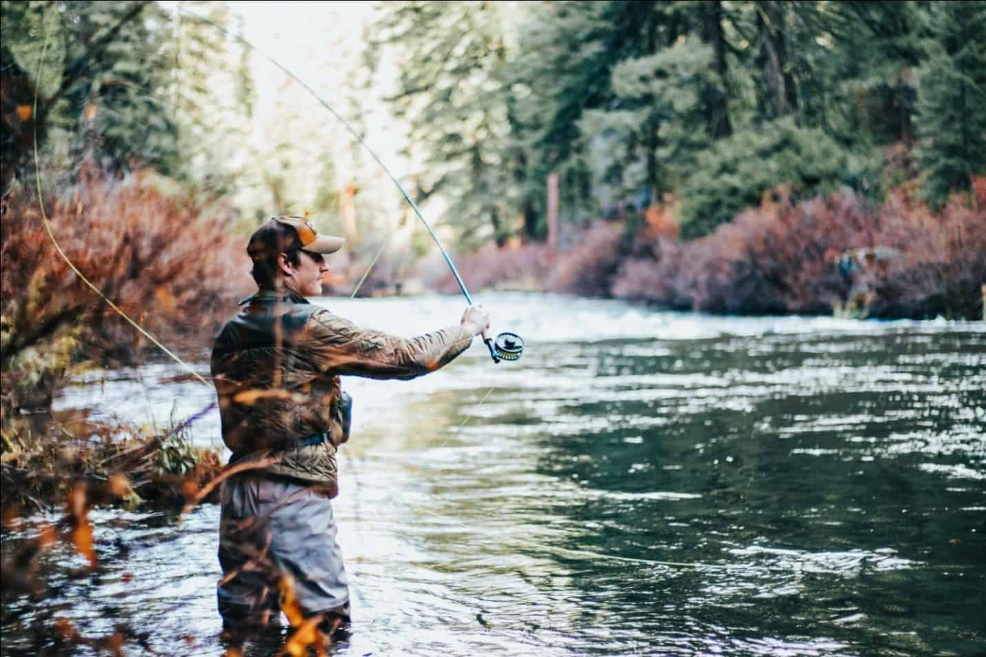 The Best Ultra Spinning Reel